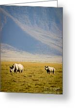Black Rhinos Walking Across The Crater Greeting Card