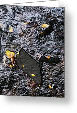 Black Rock At Graue Mill Greeting Card