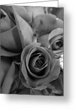 Black Roses Greeting Card