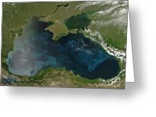 Black Sea Phytoplankton Greeting Card by Nasa