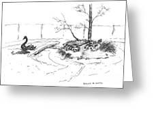 Black Swan And Sliders Greeting Card