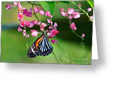 Black Veined Tiger Butterfly Greeting Card
