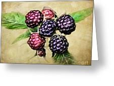 Blackberries Portrait Greeting Card
