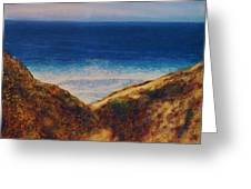 Blacks Beach-san Diego Greeting Card by Terry Jackson