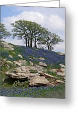 Blanketed In Blue Greeting Card