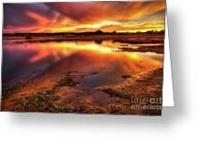 Blazing Sky Greeting Card by Carlos Caetano