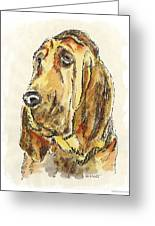 Bloodhound-watercolor Greeting Card