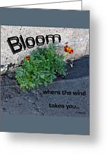 Bloom Where The Wind Takes You Greeting Card