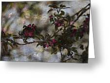 Blooming Branches Greeting Card