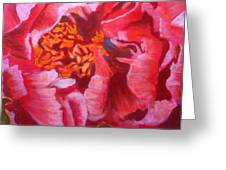 Blooming Peony Greeting Card