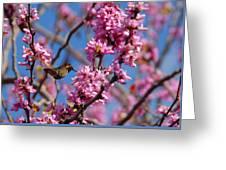 Blossoming Bird Greeting Card