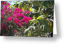 Blossoms And Breadfruit Greeting Card