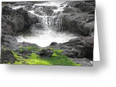 Blow Hole 2 Greeting Card