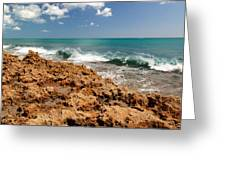 Blowing Rocks Jupiter Island Florida Greeting Card