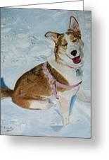 Blue - Siberian Husky Dog Painting Greeting Card