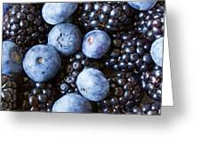 Blue And Black Berries Greeting Card