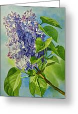 Blue And Lavender Lilacs Greeting Card