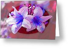Blue And Red Weigela Window Greeting Card