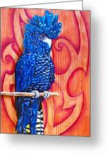 Blue Cockatoo Greeting Card by Diana Shively