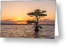 Blue Cypress Lake Sunrise Greeting Card