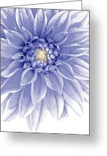 Blue Dahlia Greeting Card