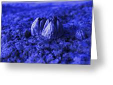Blue Eruption Greeting Card
