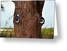 Blue Eyed Pine Greeting Card
