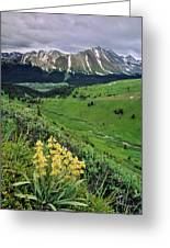 Blue Grouse Pass, Willmore Wilderness Greeting Card