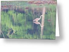 Blue Heron6 Greeting Card