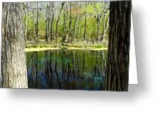 Blue Hole Springs Florida Greeting Card