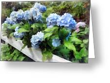 Blue Hydrangea On White Fence Greeting Card