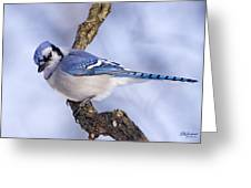 Blue On Blue Greeting Card