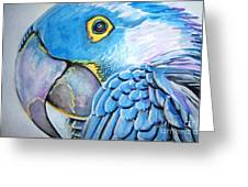Blue Parrot Greeting Card