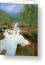 Blue Ridge Runoff Greeting Card by Max Mckenzie