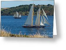 Blue Schooner 03 Greeting Card