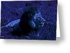 Blue Simba Greeting Card