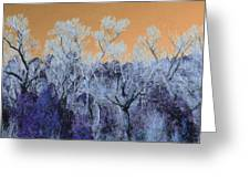 Blue Trees New Mexico Greeting Card