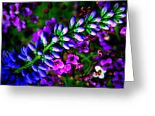 Blue Veronica Greeting Card