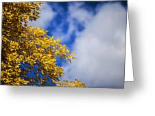 Blue White And Gold Greeting Card