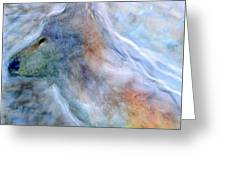 Blue Wolf In Mist Greeting Card