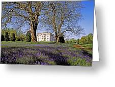 Bluebells In The Pleasure Grounds, Emo Greeting Card