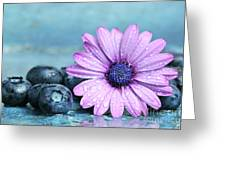 Blueberries And Daisy Greeting Card by Sandra Cunningham