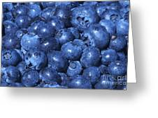 Blueberries With Waterdrops Greeting Card