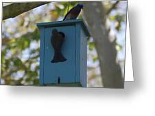 Bluebird House Greeting Card