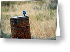 Bluebird On A Barrel Greeting Card