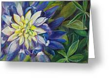 Bluebonnet Daze Greeting Card
