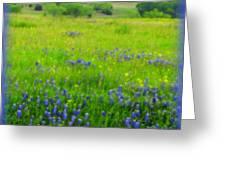 Bluebonnet Dreams Greeting Card