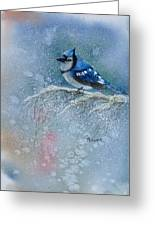 Bluejay In Winter Greeting Card