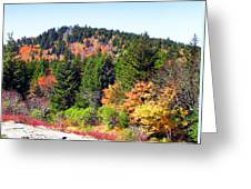 Blueridge Parkway View Near Mm 423 Greeting Card
