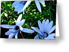 Bluey Twinkles Greeting Card